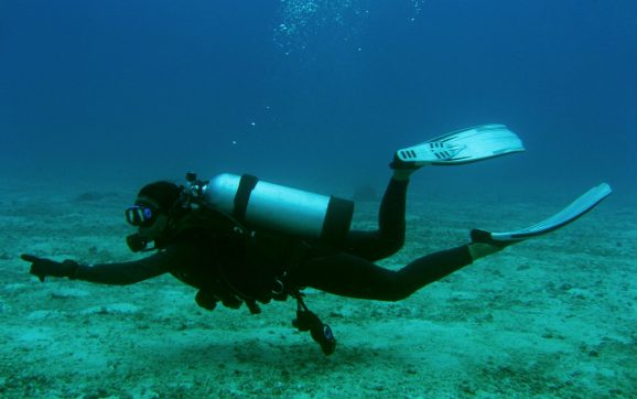 Enjoy an Unforgettable Maui Scuba Diving Experience