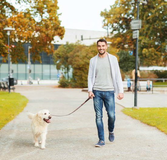 5 Reasons Only a Professional Dog Walker in NYC Will Do